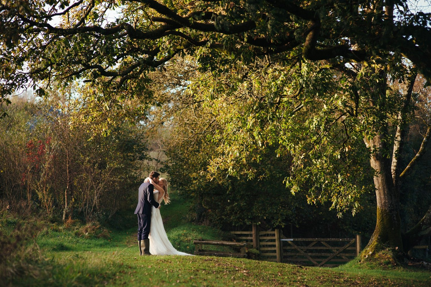Bride and groom romantic kiss under an old oak at Tree Top Escape, Devon, in the golden evening light